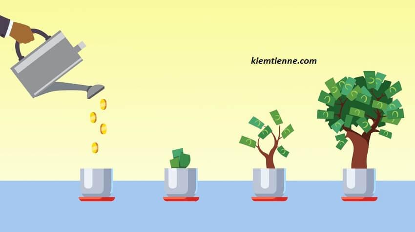 Nguyên tắc đầu tư của Bill Hoang